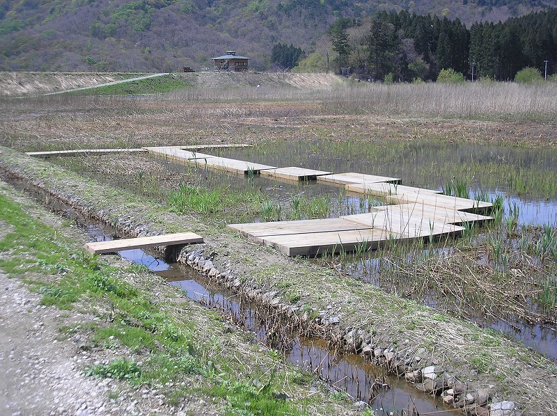 【移動式木道】 鶴岡自然学習交流館