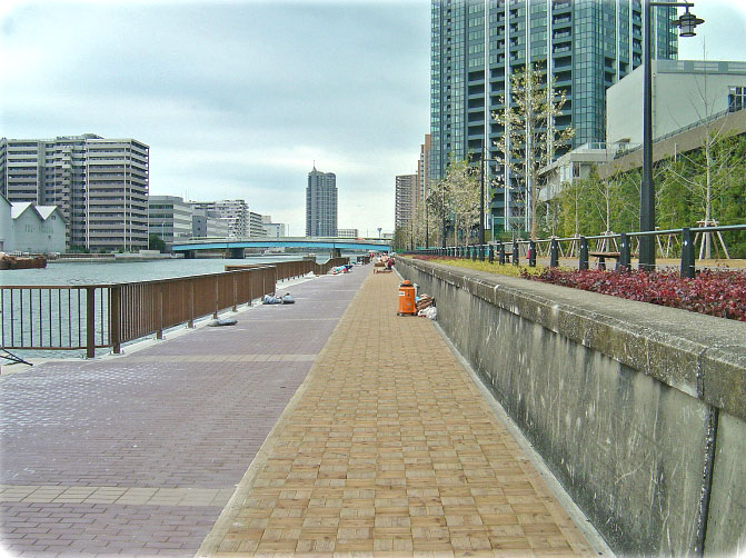東京都 豊洲運河護岸 東京多摩産間伐材を活用した臨海副都心の護岸歩道