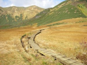 【木製歩道】 鳥海国定公園 月山森線歩道